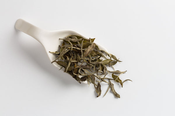 Bai Mu Dan Bliss