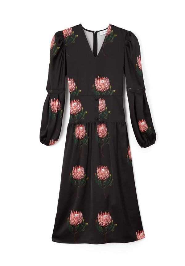 PHOEBE GRACE Dresses DAISY Midi dress with puffed sleeves and V-Neck in Black Protea