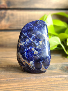 Large Sodalite Free Form