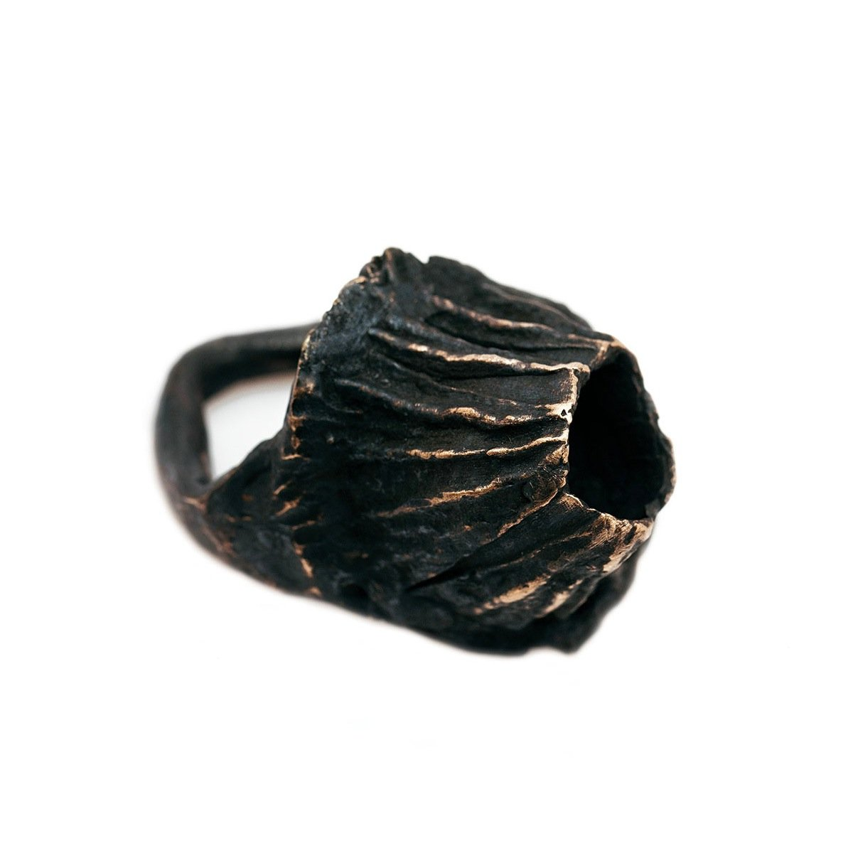 The capsule ring - oxidized Bronze