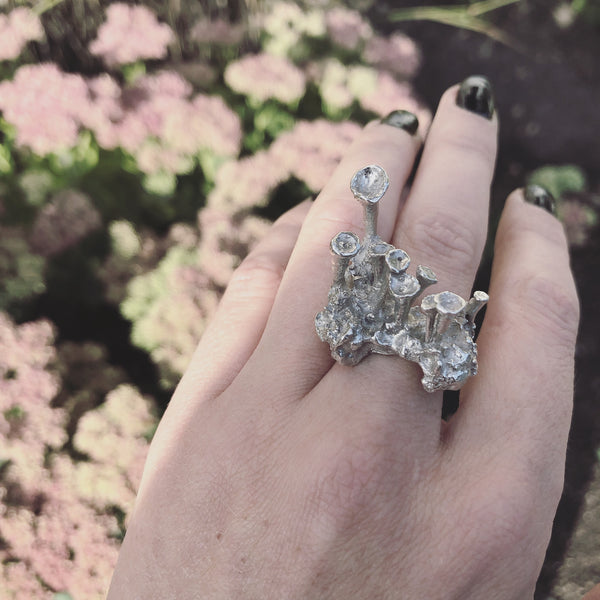 The wonderland ring - Silver