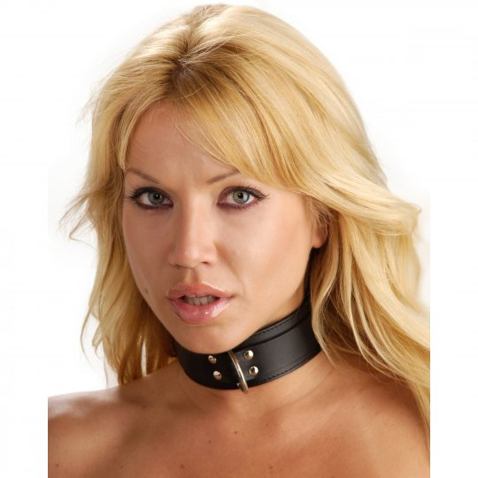 Strict Leather Standard Lined Collar