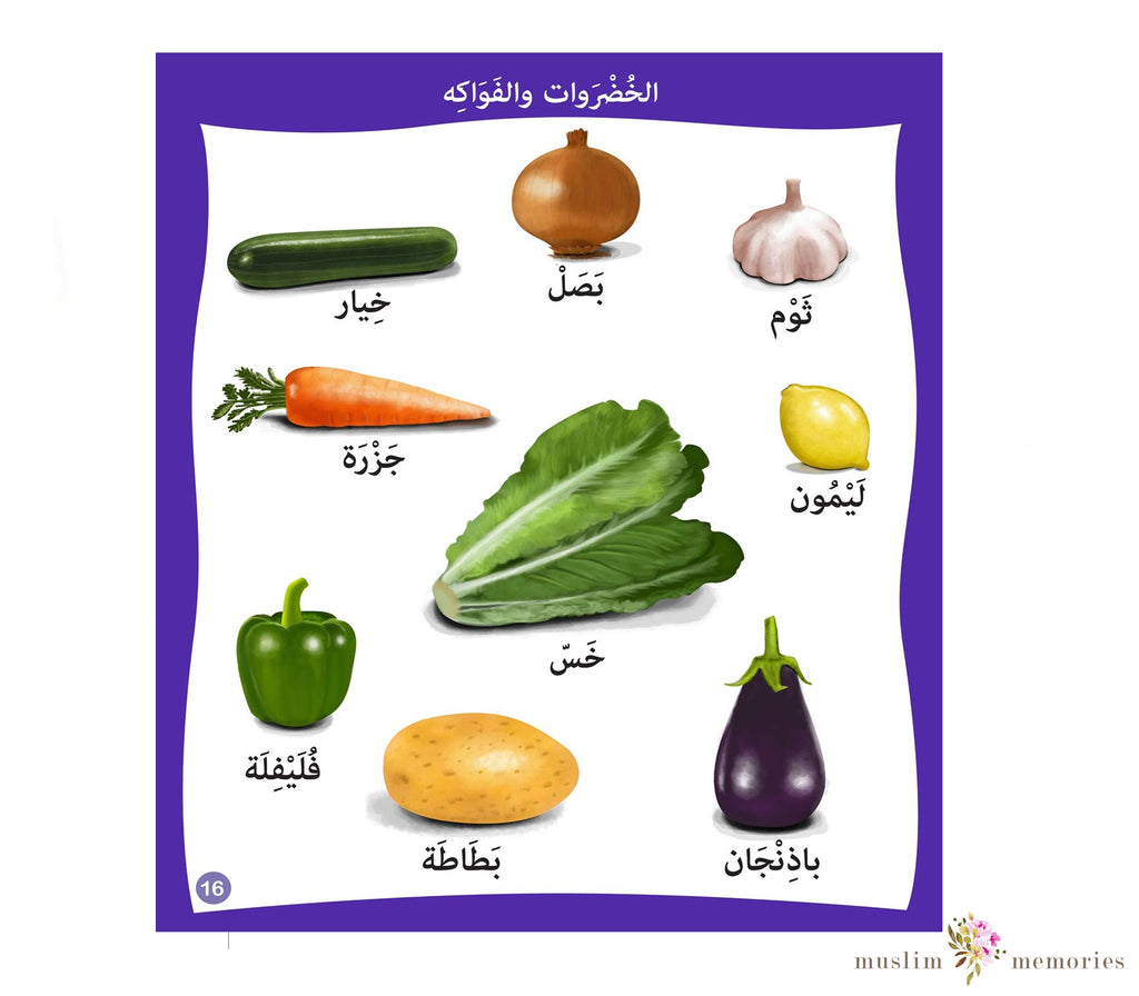 "Maa Hathaa? (""What's This?"") Arabic Vocabulary Book"