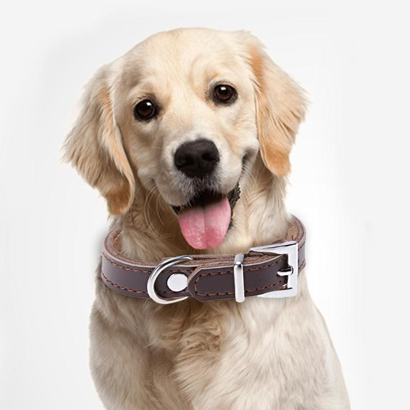 PU Leather Dog Collar Solid Traction Collar for Dog Puppy Cat Pet Neck Belt Strap Pet Dog Supplies XS-XL
