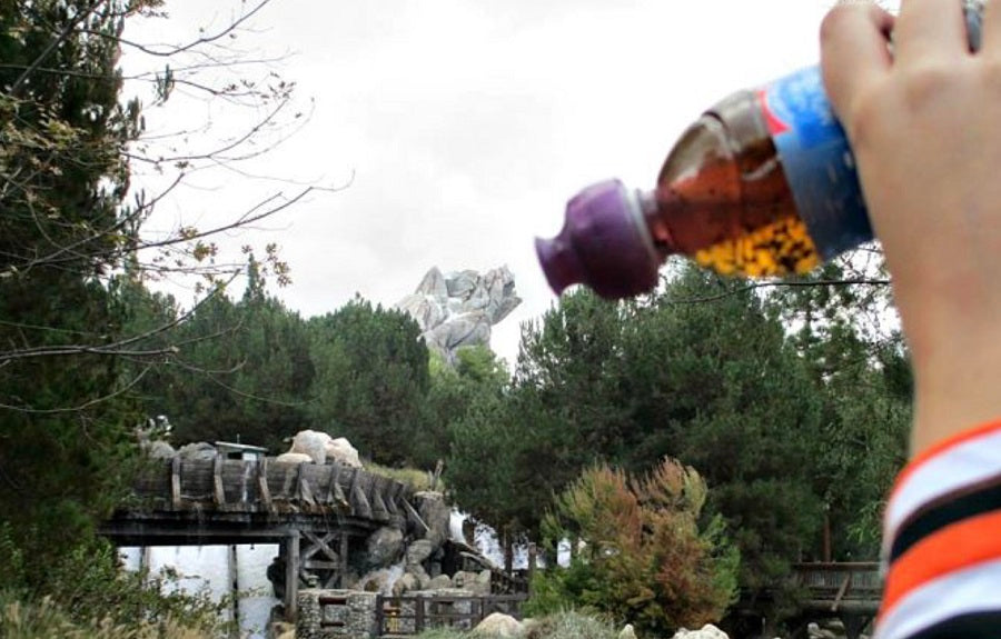 Steep and Go in Disney Land