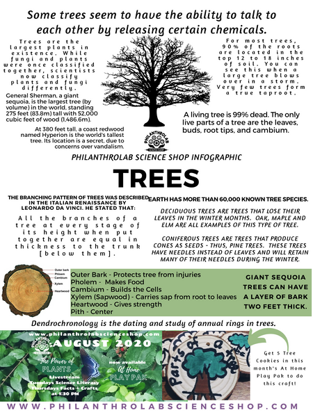 Power of Plants: Trees