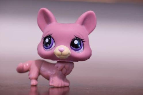 TOP Satisfied Littlest Pet Shop LPS