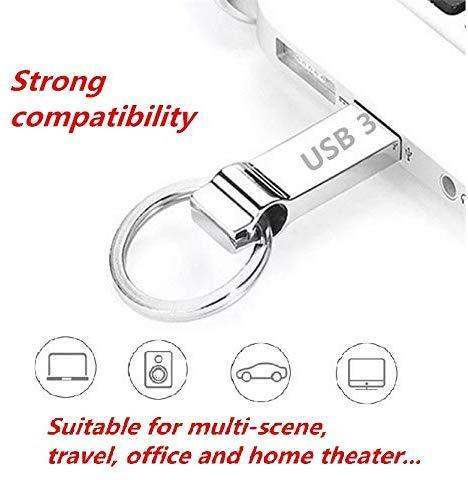 DXBUFU 256GB Silver Metal Compatible 2.0 &3.0 256GB USB Flash Drive, Portable Waterproof Metal Pen Drive Storage Keychain Thumb Drive Memory Stick with Anti-Lost Keychain (256GB)