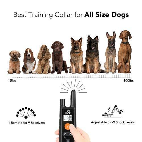 Dog Training Collar - Rechargeable Dog Shock Collar w/3 Training Modes, Beep, Vibration and Shock, 100% Waterproof Training Collar, Up to 1000Ft Remote Range, 0~99 Shock Levels Dog Training Set by DOG CARE