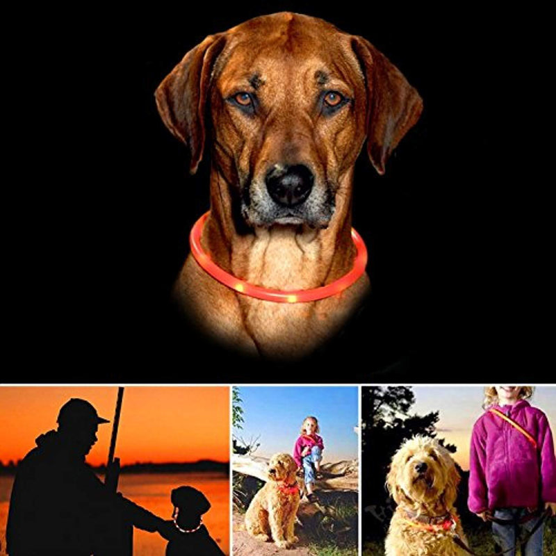 ITERY Dog Collar, Led USB Rechargeable Pet Safety Collar Waterproof Light up Adjustable Flashing Collar