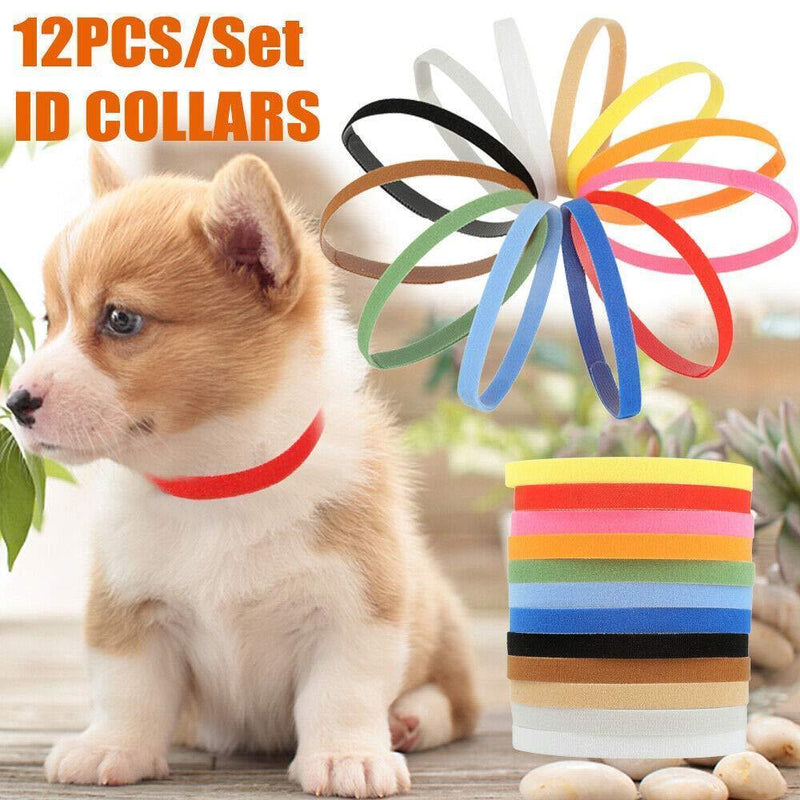 Solstice Soft Velcro Whelping ID Collars, Pack of 12 (Assorted Colors), Adjustable & Reusable - Great for Identifying Puppies, Kittens, and Other Small Animals