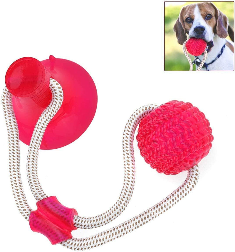 CAMTOA Pet Toys with Suction Cups, Dog Bite Rope Durable Self-Balloon Rubber Ball Toys, Multifunctional Molar Chew Toys, for Dental Care, Teeth Cleaning, Suitable for Dogs and Cats