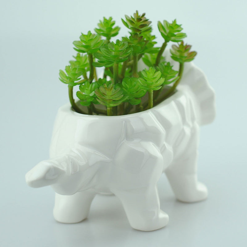 VanEnjoy 6 Inch Cute Cartoon Dinosaur Shape Ceramic Succulent Planter, Water Culture Hydroponics Bonsai Cactus Flower Pot,Air Plant Vase Holder Desktop Decorative Organizer (Triceratops, White)