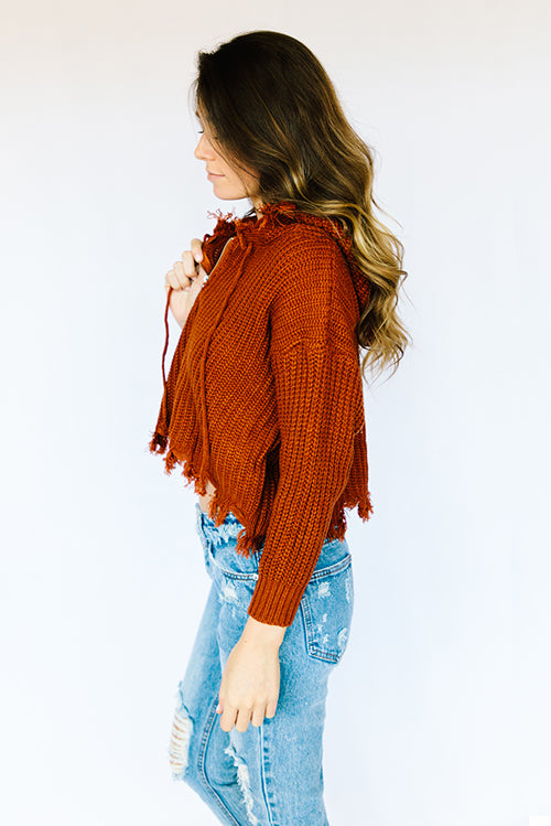 Frankly Fringed Hooded Jacket- Brown