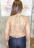 Sheer Champagne Blouse