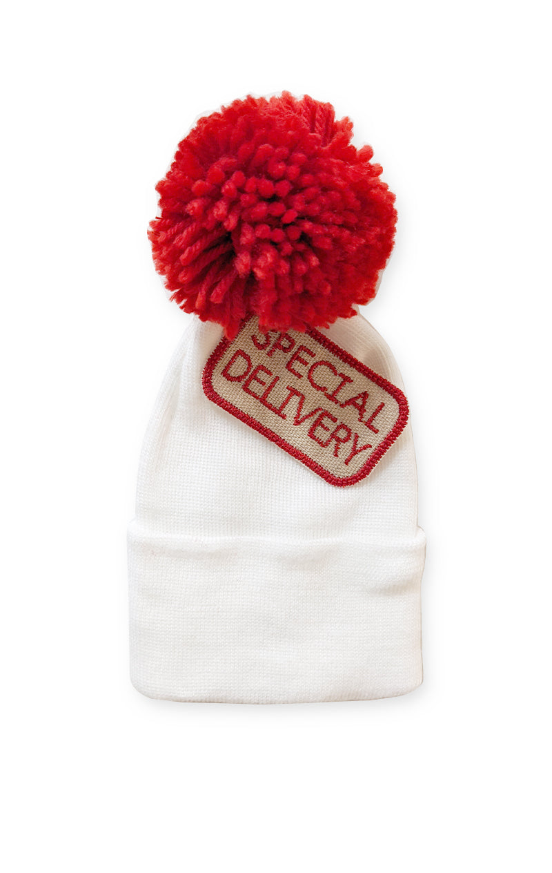 Special Delivery Newborn Beanie