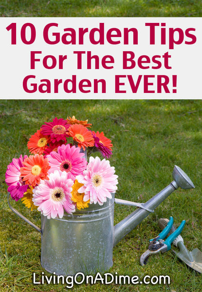 Here are 10 garden tips and ideas sure to give you the best garden ever! Check out our tips for easy composting, cheap and natural weed killer, organizing your garden shed, free seed starting containers and much more!