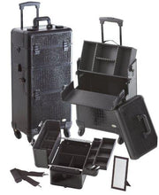 Load image into Gallery viewer, Pro 2 in 1 Makeup Case 4 Wheeled Spinner w/ Adjustable Dividers