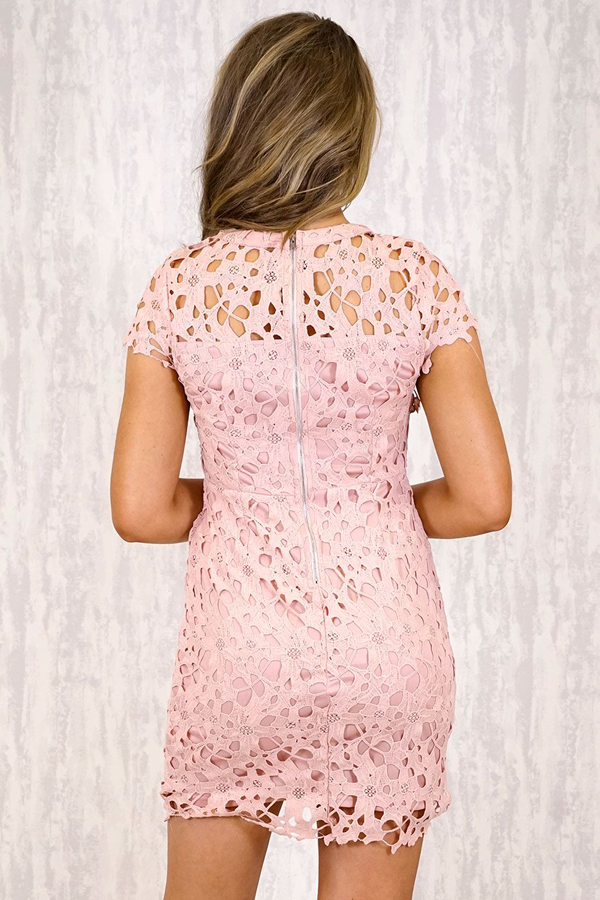 Dress With Heavy Lace Embroidery Feature - Blush