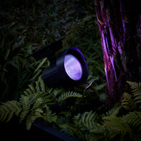 Set of 2 Colour Changing Solar Spotlights