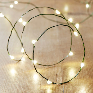 50 Warm White LED Green Micro Fairy Lights