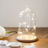 Micro Fairy Light Bell Jar Bundle