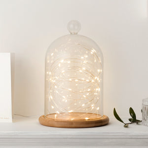 Micro Fairy Light Large Bell Jar Bundle