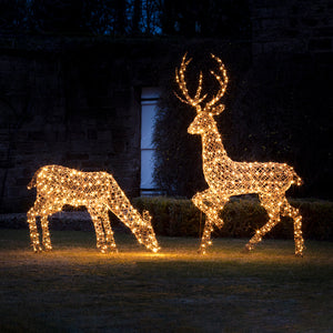 Large Rattan Stag & Doe Outdoor Christmas Figures