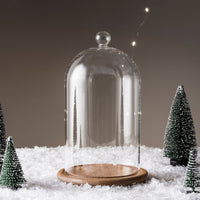 Regular Glass Dome Bell Jar 20Cm