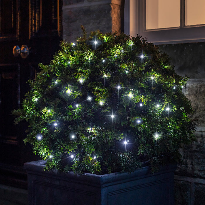 Christmas Bush Lights.100 White Led Outdoor Battery Fairy Lights On Green Cable