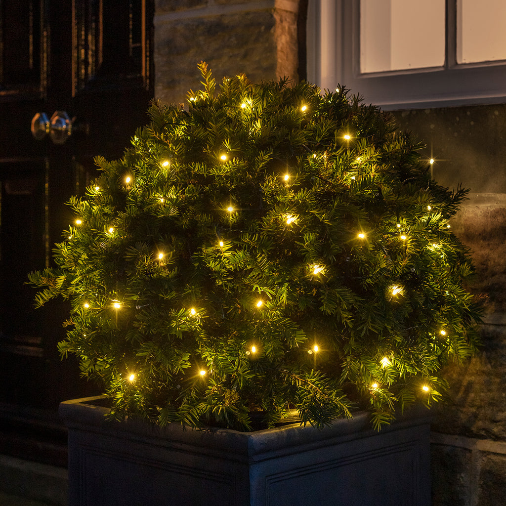 Christmas Bush Lights.100 Warm White Led Outdoor Battery Fairy Lights On Green Cable