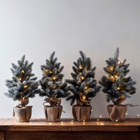 53Cm Pre Lit Frosted Mini Christmas Tree