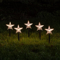 Acrylic Star Stake Lights