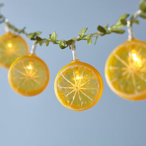 10 Lemon Outdoor Fairy Lights