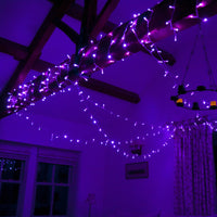 60m 600 Purple LED Connectable Fairy Lights Clear Cable Core Series