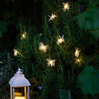 10 Butterfly Led Solar Fairy Lights