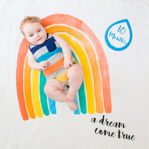 Baby's First Year Milestone Blanket & Card Set - A Dream Come True!