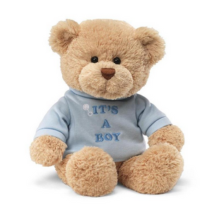 It's a Boy Embroidered Tshirt Bear by Gund