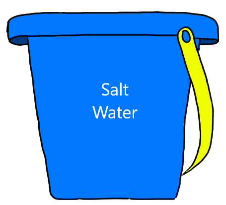 5 Gallons Saltwater (Includes Bucket)