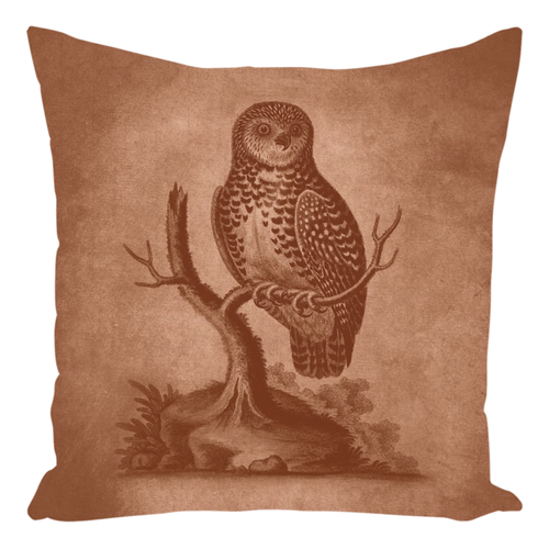 Two-Sided Country Critter Owl and Rabbit Throw Pillow