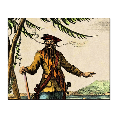 Colorful Blackbeard Pirate on 8x10 Stand Up Art Canvas