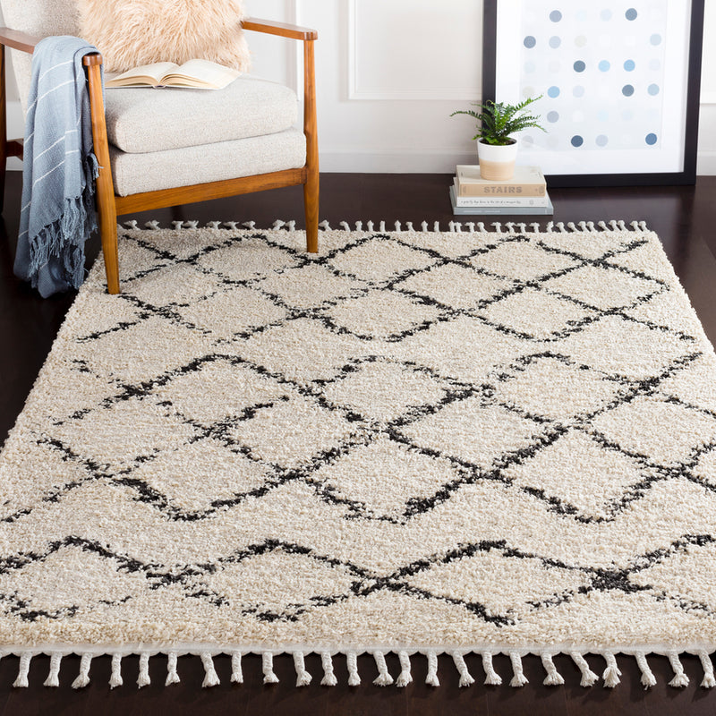 Berber Shag Area Rug by Surya in Multi
