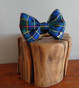 Cockburn Blue Tartan Dog Bow Tie - Luxury Highland Pet Couture