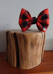 Rob Roy Tartan Dog Bow Tie - Luxury Highland Wool Pet Couture
