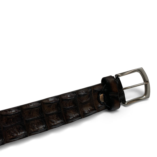 Croco || Ceintuurs || Dark brown - Alberto Bellini