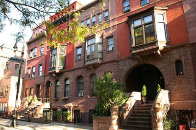 Planning Your Fall Day Trip to Harlem's Mt Morris Park Historic District