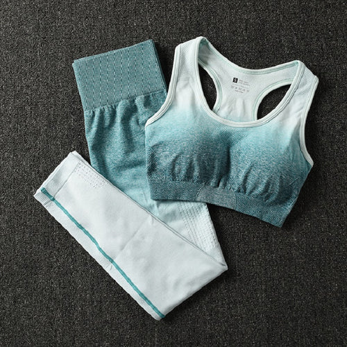 2 Piece Women Workout Sportswear Set