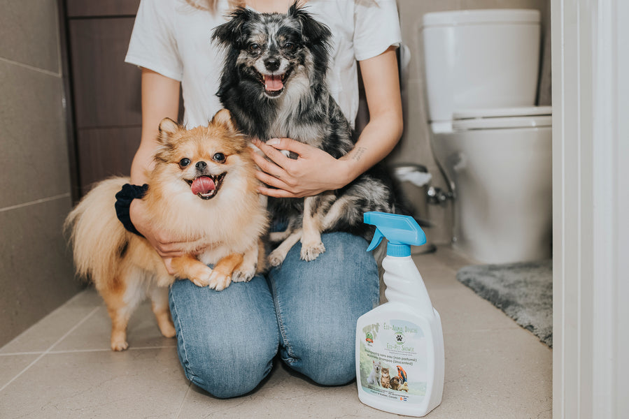 New Waterless Shampoo, Made By Canadian Company, Redefines Bath Time For Your Dog