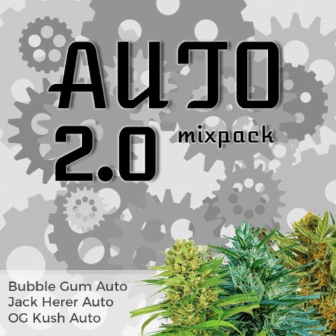Auto 2.0 Mixpack - Los Angeles Cannabis Club