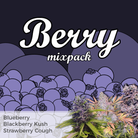 Berry Mixpack - Los Angeles Cannabis Club